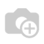 The Light of Christ - 34x48 Giclee - A/P 100 - Giclee Only